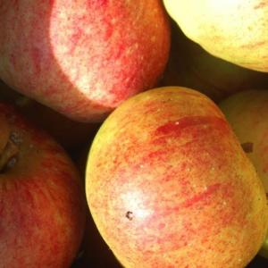 Zoete appeltjes