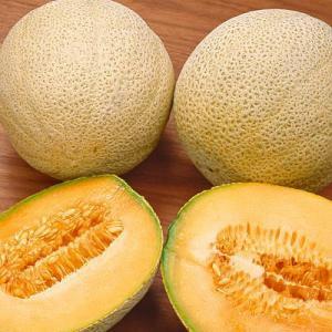 Cantaloupe meloenen